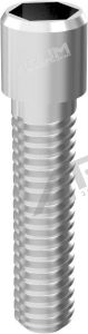 [Pack of 10] ARUM EXTERNAL SCREW (NP) 3.4 - Compatible with 3i® External®